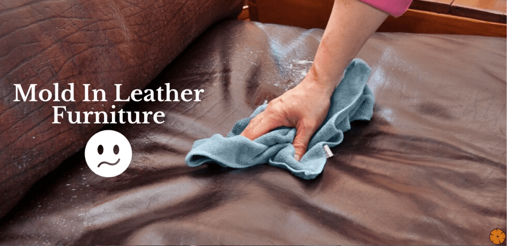How to Clean Mold off Leather Furniture